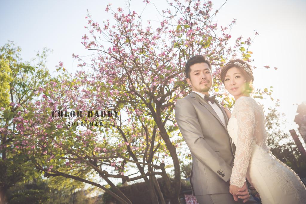 婚紗-台南樹屋 (6)